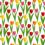 Spring Tulip Flowers Seamless Pattern Background Vector Illustration Stock Images