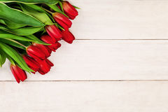 Spring Tulip Flowers on Wooden Background Stock Images