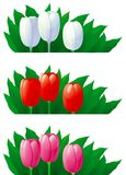 Spring tulips. Three vector banners of red, white and pink tulips with green leaves isolated on white Royalty Free Stock Images