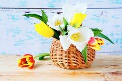 Spring tulips in a basket, Stock Photos