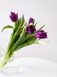 Spring tulips bouquet Stock Image