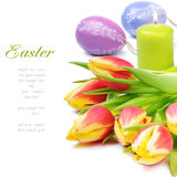 Spring tulips in easter set royalty free stock photo