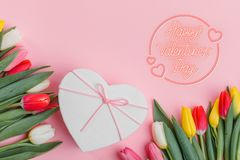 Valentine`s Day background. Beautiful fresh tulips. royalty free stock images