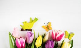 Spring tulips flowers. On a white wooden background Stock Image