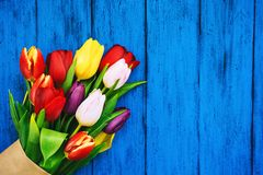 Spring tulips flowers on wooden background royalty free stock photos