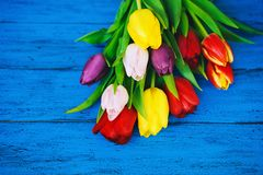 Spring tulips flowers on wooden background royalty free stock photography