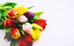 Spring tulips flowers on wooden white background stock images