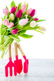 Tulips and garden tools Royalty Free Stock Photography