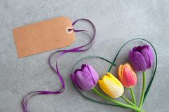 Spring tulips with greeting card stock images