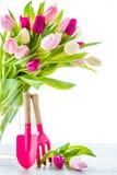 Spring Tulips In Vase Stock Photo