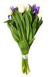Spring tulips and iris flowers. Stock Image