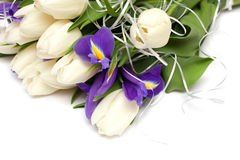 Spring tulips and iris flowers. Stock Photography