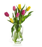 Spring tulips in jug Royalty Free Stock Image