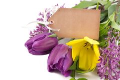 Spring Tulips and Lilac with Tag Stock Photography