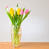 Spring tulips in a vase Stock Photo
