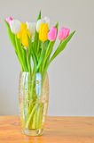 Spring tulips in a vase Stock Photo