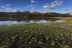 Spring at Tuolumne Meadows in Yosemite Royalty Free Stock Photography