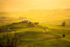 Spring in the Tuscany Royalty Free Stock Image
