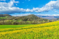 Spring at tuscany Stock Photo
