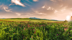 Spring in Tuscany Stock Photography
