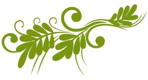 Spring twig Stock Image