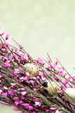 Spring Twig with pink blossoms Stock Photography