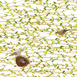 Spring twigs background. Stock Photo