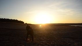 In spring of two guys playing football on the sand, men playing football on beach lit by sunlight. In spring of two guys playing football on sand, men playing stock video footage
