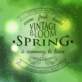 Spring Typographic  on Vintage green galaxy Stock Image