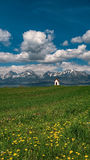 Spring under the High Tatras, Slovakia Stock Image