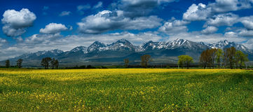 Spring under the High Tatras, Slovakia. High Tatras, Slovakia in spring Stock Photography