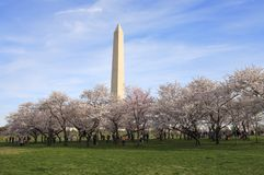 Spring on the United States National Mall Royalty Free Stock Photo