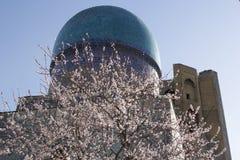 Spring in Uzbekistan. The spring festival of Navruz. Flowering trees near the mosque Bibi Khanum, Samarkand.  stock images