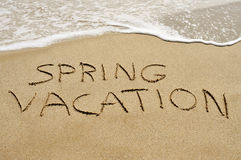 Spring vacation on the beach Stock Image