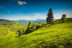 Spring Valley con las altas montañas Fotos de archivo
