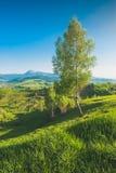 Spring Valley hermoso Foto de archivo