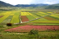 /spring van Castelluccio landschap Royalty-vrije Stock Foto's