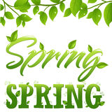 Spring. Vector Royalty Free Stock Photography
