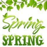 Spring. Vector royalty free illustration