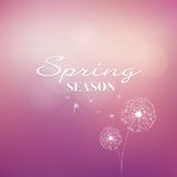 Spring vector background Royalty Free Stock Image