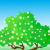 Spring vector Background. With tree and flowers Stock Images