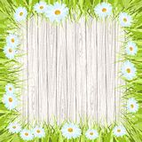 Spring vector background with wooden sign , Grass Royalty Free Stock Photography