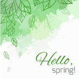 Spring vector card with doodle leaves and green blobs Royalty Free Stock Photos