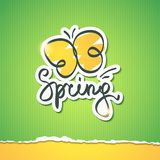 Spring vector illustration Royalty Free Stock Photography