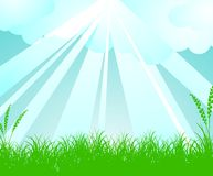 Spring vector landscape Royalty Free Stock Photos