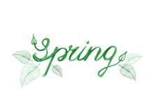 Spring vector lettering. In watercolor style with green young leaves decoration, banner, card template.  Vector illustration in eps8 fromat Royalty Free Stock Images