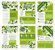Spring vector posters or brochures flowers bunches. Springtime greetings design on vector posters or brochures templates set. Welcome Spring wishes and quotes Stock Images