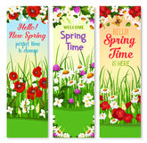 Spring vector wishes banners and flowers bunches. Springtime greetings vector banners set with Hello Spring wishes. Holiday design of blooming poppy and begonia Royalty Free Stock Photo