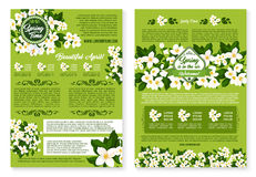 Spring vector wishes posters of flowers bunches. Springtime greetings vector posters set with Welcome Spring wishes and quotes. Holiday design of blooming white Stock Photography