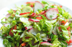 Spring vegan salad with tomato, cucumbers, radish and chinese cabbage. On a white plate. Close up Royalty Free Stock Photography